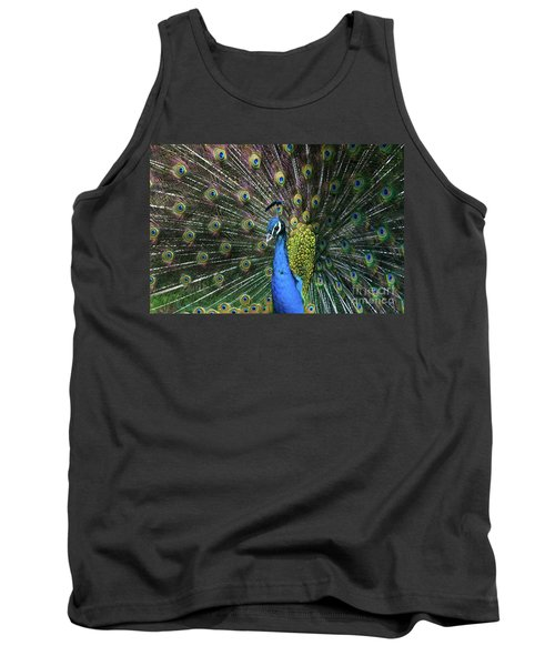 Indian Peacock With Tail Feathers Up Tank Top