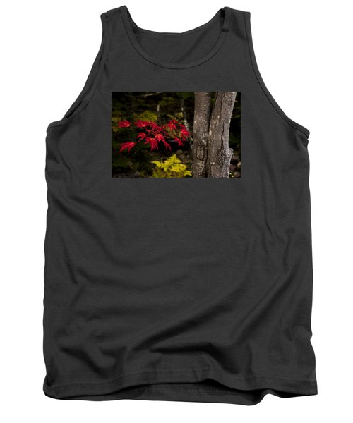 Tank Top featuring the photograph Intensity by Chad Dutson