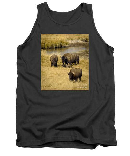 Tank Top featuring the photograph It's A Family Affair by Sandy Molinaro