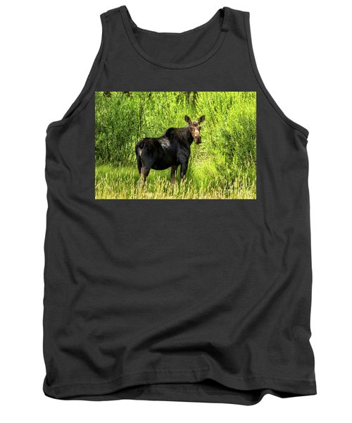 Keep Your Distance Wildlife Art By Kaylyn Franks Tank Top