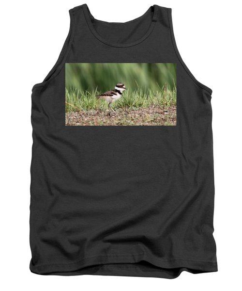 Killdeer - 24 Hours Old Tank Top by Travis Truelove