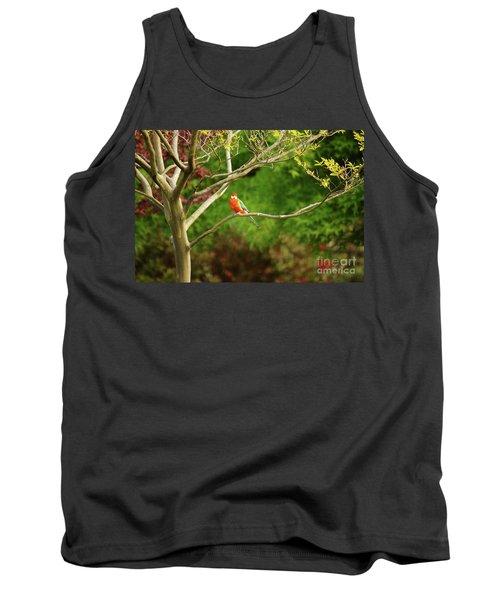 King Parrot Tank Top by Cassandra Buckley