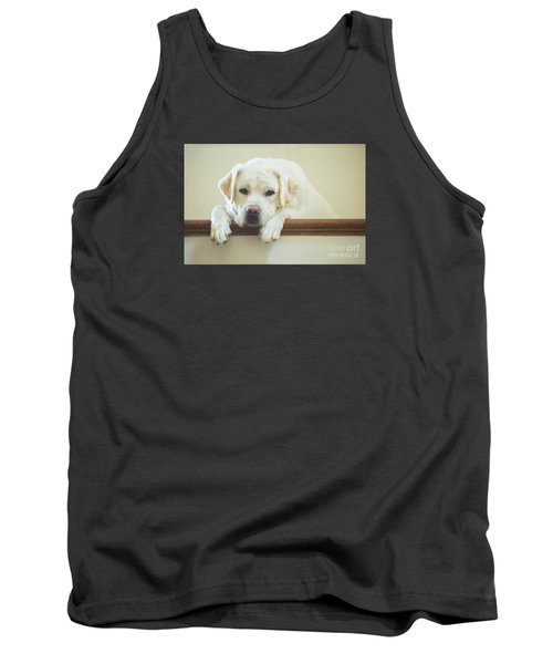 Labrador Retriever On The Stairs Tank Top by Diane Diederich