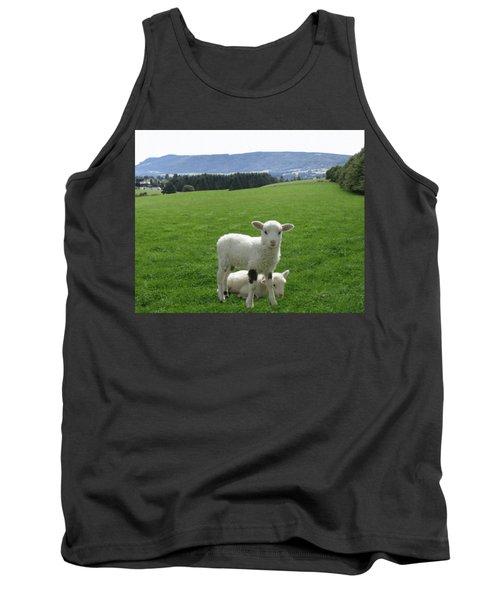 Lambs In Pasture Tank Top