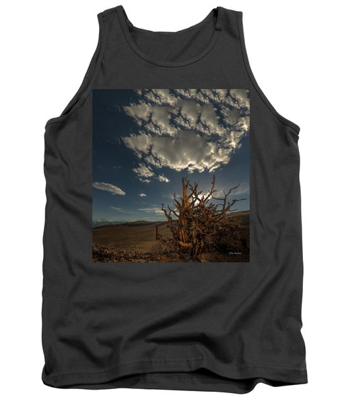 Late Afternoon In The Bristlecone Forest Tank Top