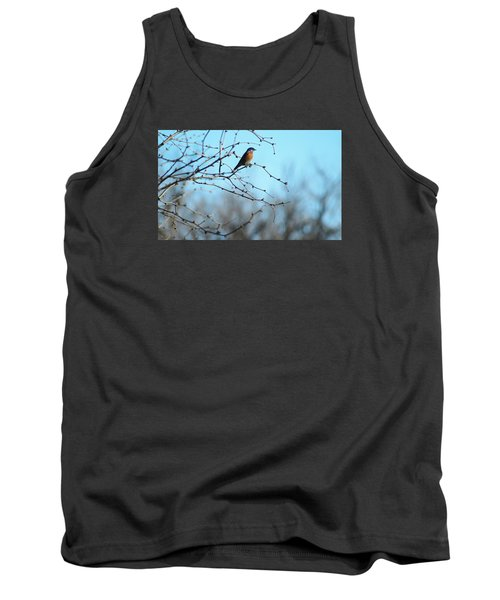 Lazuli Bunting Looks Out Tank Top