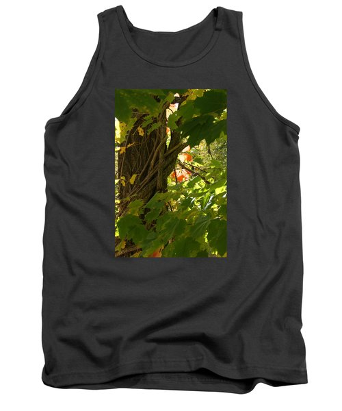 Leaf Peeping In Red Tank Top