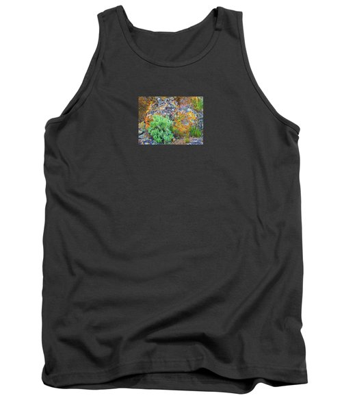 Lichen Rainbow   Tank Top by Michele Penner