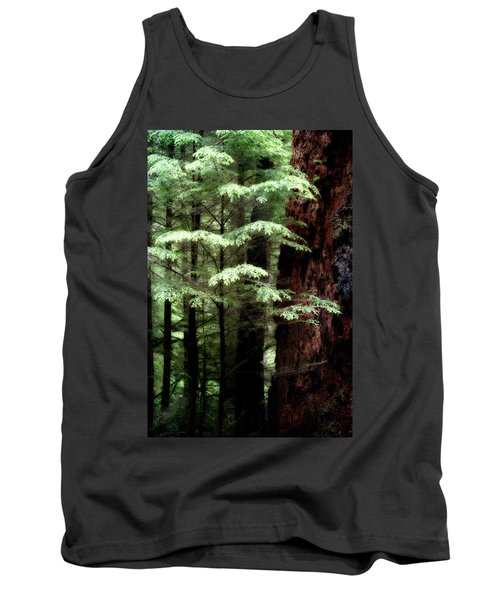 Light On Trees Tank Top