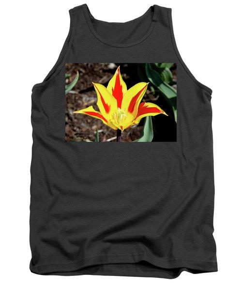 Lily Tulip Tank Top