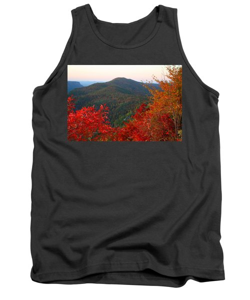 Tank Top featuring the photograph Linville Gorge by Kathryn Meyer