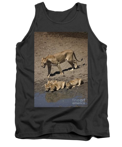 Lion Cubs And Mom Get A Drink Tank Top by Darcy Michaelchuk