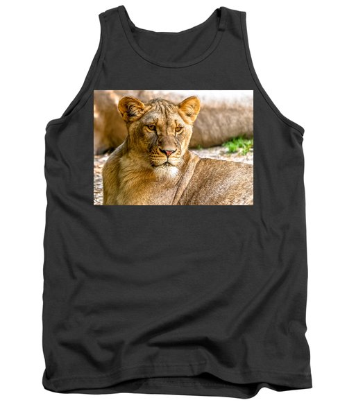Lioness Tank Top by Wayne King