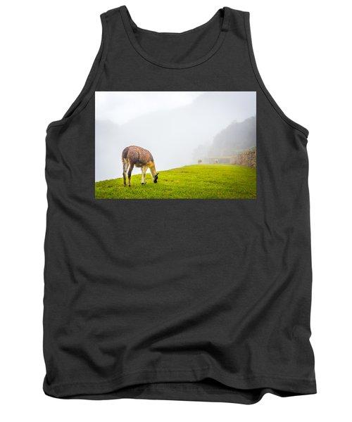 Llama  Tank Top