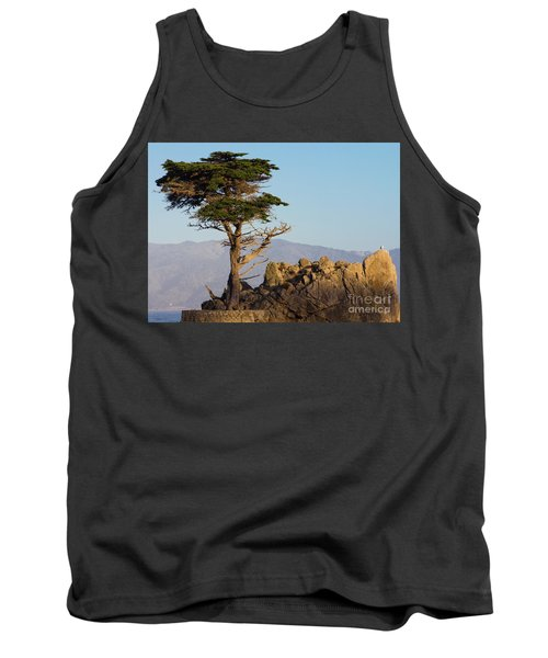 Lone Cypress Tree  Tank Top