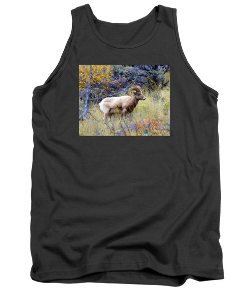 Tank Top featuring the photograph Long Horns Sheep by Irina Hays