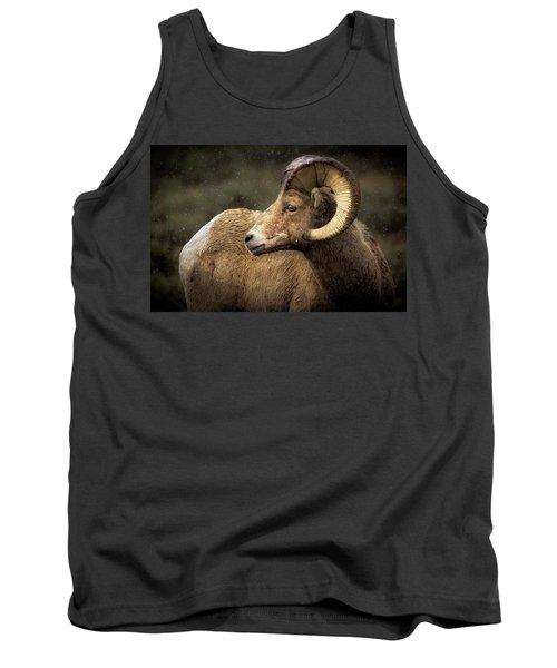 Looking Back - Bighorn Sheep Tank Top