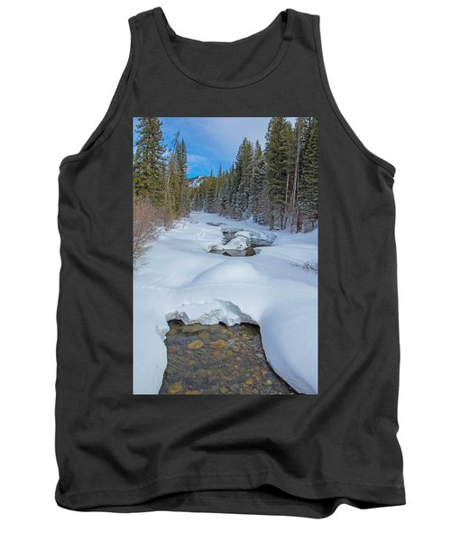 Looking Down The Elk Tank Top