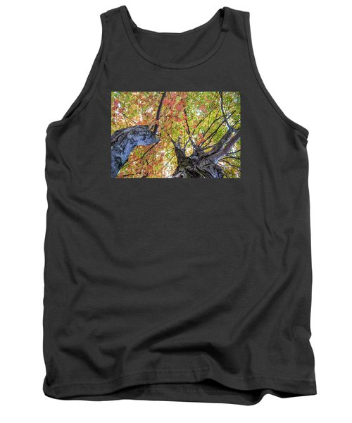 Looking Up - 9670 Tank Top by G L Sarti
