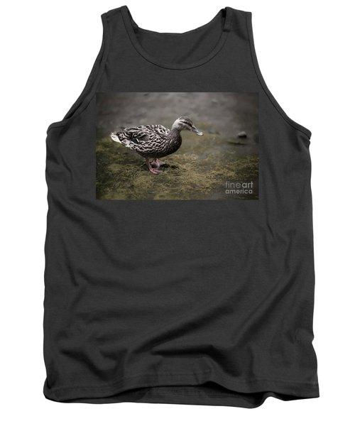 Malard,duckling Tank Top
