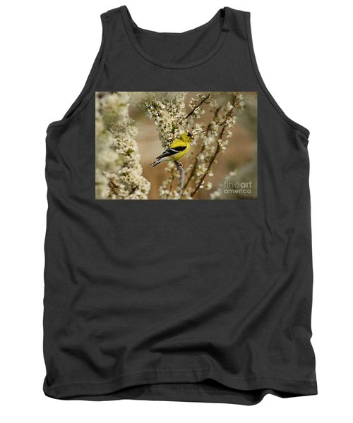 Male Finch In Blossoms Tank Top by Cathy  Beharriell