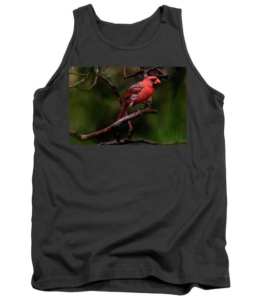 Male Northern Cardinal Tank Top