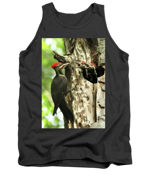 Male Pileated Woodpecker At Nest Tank Top by Mircea Costina Photography