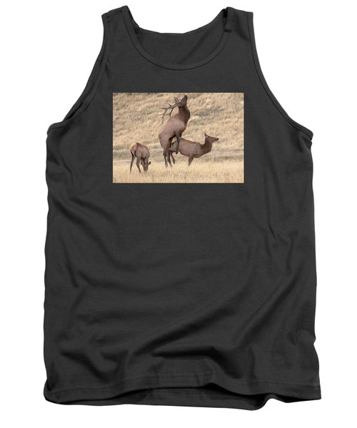 Tank Top featuring the photograph Mating  by Kelly Marquardt