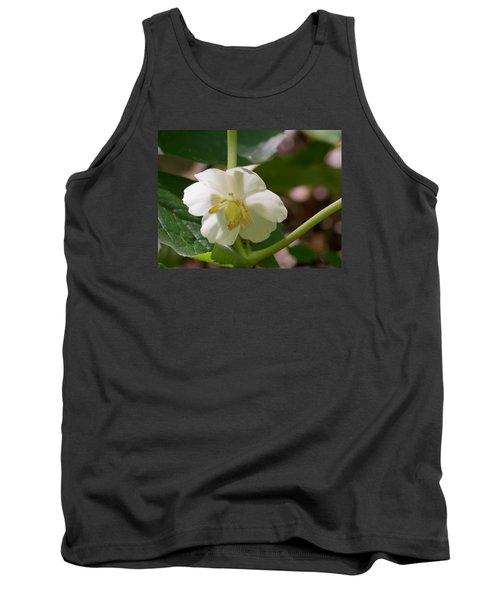May-apple Blossom Tank Top