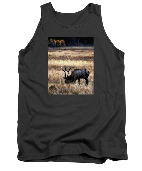 Meadows Of Horseshoe Park  Tank Top