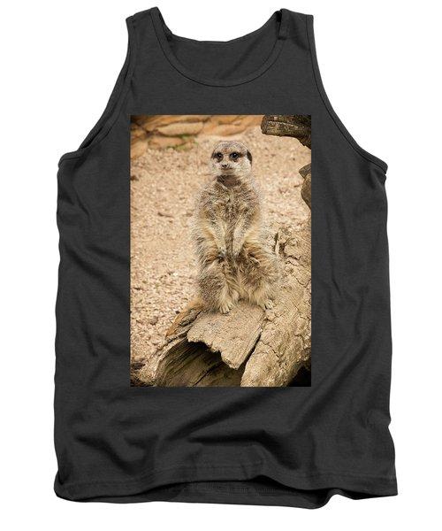 Meerkat Tank Top by Chris Boulton