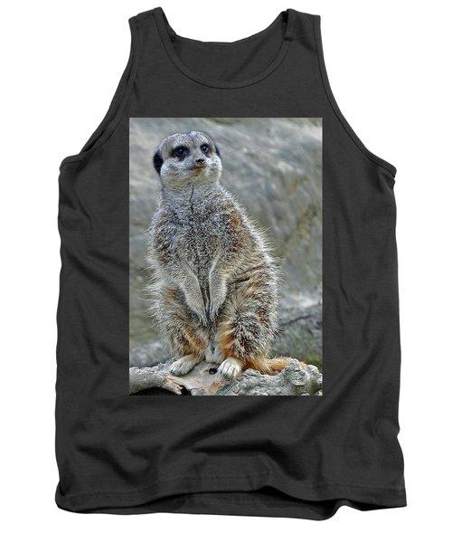Meerkat Poses Tank Top