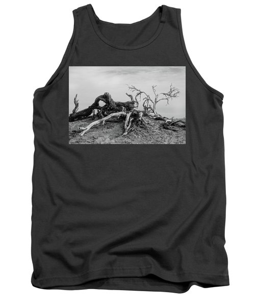 Mesquite Roots - Death Valley 2015 Tank Top