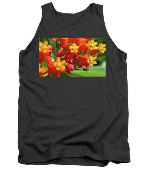 Milkweed Flowers Tank Top by Melinda Saminski