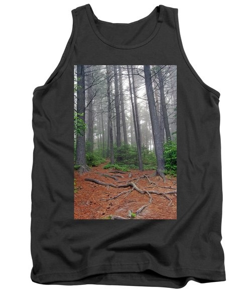 Misty Morning In An Algonquin Forest Tank Top