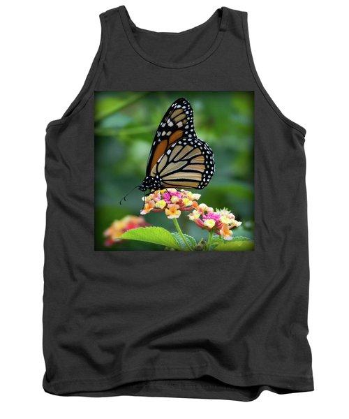 Monarch Butterfly Art II Tank Top