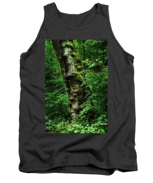 Moody Tree In Forest Tank Top