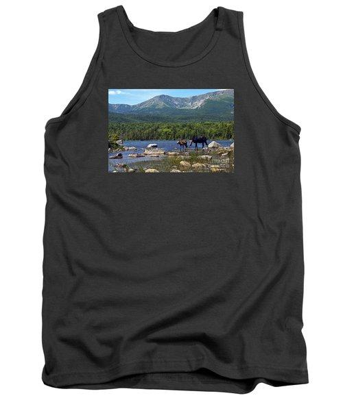 Moose Baxter State Park Maine 2 Tank Top by Glenn Gordon