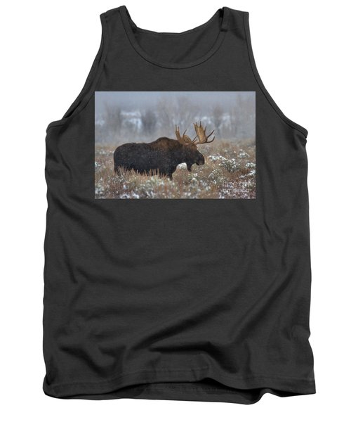 Tank Top featuring the photograph Moose In The Fog by Adam Jewell