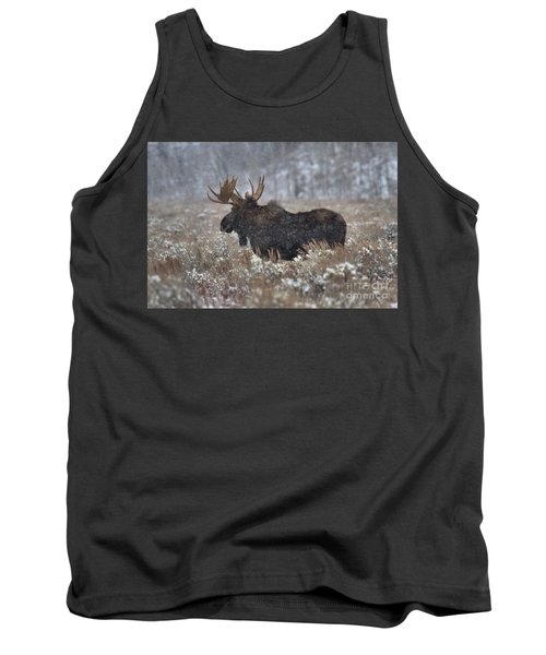 Tank Top featuring the photograph Moose In The Snowy Brush by Adam Jewell