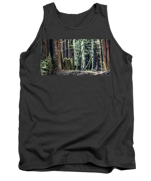 Tank Top featuring the photograph Morning Redwoods by Shirley Mangini