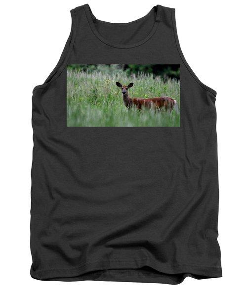 Morninng Deer Tank Top