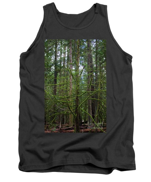 Moss Covered Tree Tank Top