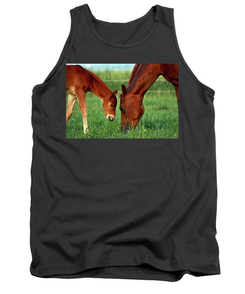 Mother And Foal 3377 H_2 Tank Top