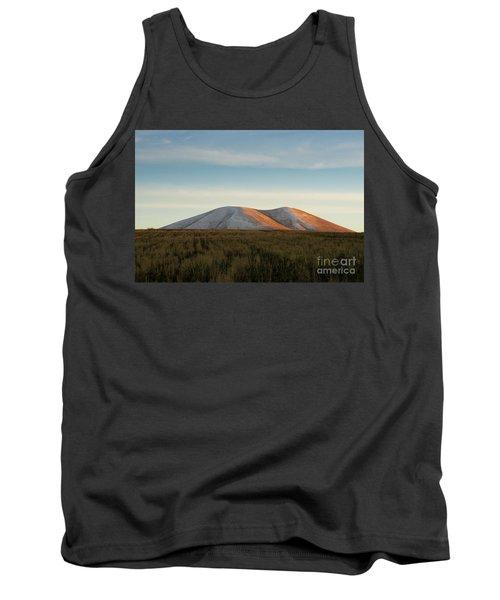 Mount Gutanasar In Front Of Wheat Field At Sunset, Armenia Tank Top by Gurgen Bakhshetsyan