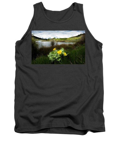 Mount Moran Spring Tank Top