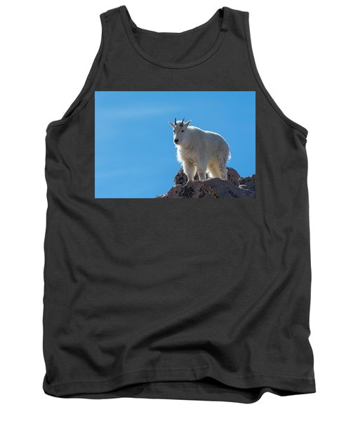 Tank Top featuring the photograph Mountain Goat 4 by Gary Lengyel