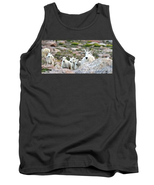Tank Top featuring the photograph Mountain Goat Family Panorama by Scott Mahon