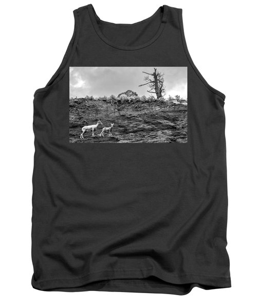 Mountain Goat With A Kid For A Walk Tank Top