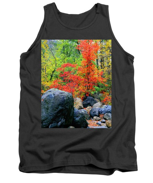 Oak Creek Canyon Red Tank Top
